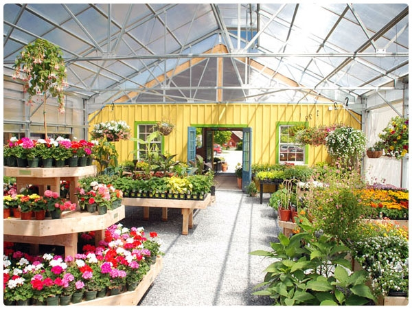 Matterhorn Series Attractive And Rugged Rimol Greenhouses
