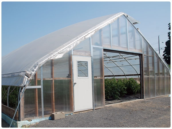noreaster 30 x 72 - Rimol Greenhouse Of Photos