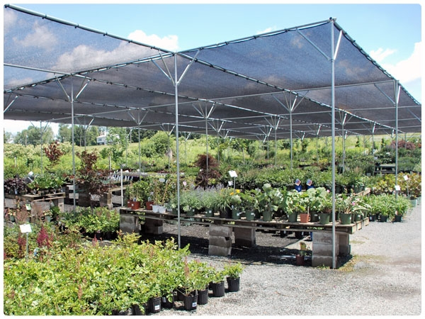 50 39 wide shade structure protect your plants rimol for Home shade structures
